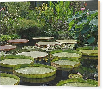 Wood Print featuring the photograph A Water Garden by Byron Varvarigos