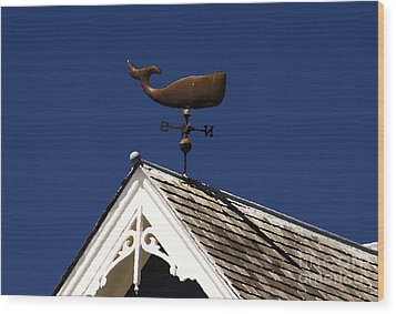 A Whale Of A House Wood Print by David Lee Thompson