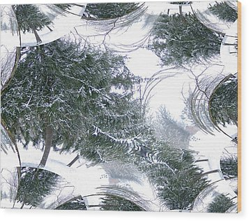 A Winter Fractal Land Wood Print