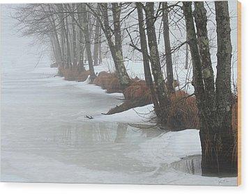 A Winter's Scene Wood Print by Karol Livote