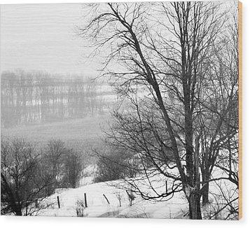 A Wintry Day Wood Print by Gerlinde Keating - Galleria GK Keating Associates Inc