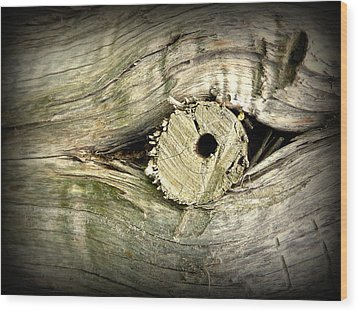 A Wooden Eye Wood Print by Cindy Wright