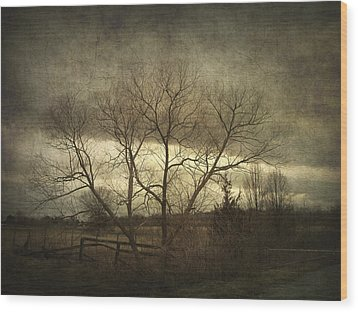 A Wyeth Landscape Wood Print