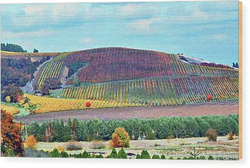 A Yamhill Co. Vineyard Wood Print