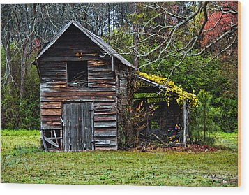A Yellow Cover Wood Print by Christopher Holmes