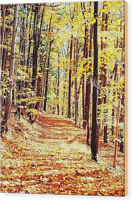 A Yellow Wood Wood Print by Joshua House