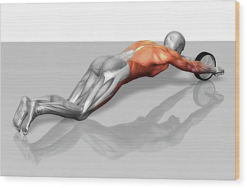 Ab Wheel Exercise Wood Print by MedicalRF.com