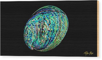 Abalone On Black Wood Print by Rikk Flohr