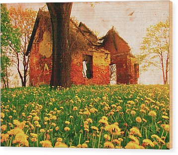 Abandoned Beauty Wood Print by Emily Allred