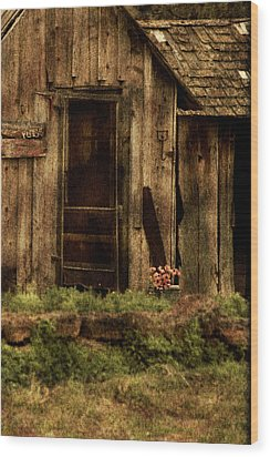 Abandoned Wood Print by Bonnie Bruno