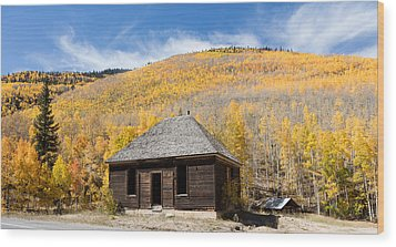 Abandoned Cabin Near The Old Mining Town Of Ironton Wood Print by Carol M Highsmith