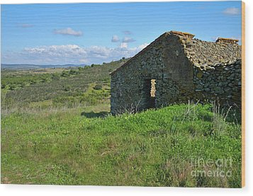 Abandoned Cottage In Alentejo Wood Print by Angelo DeVal