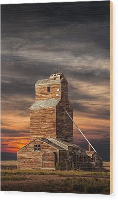 Abandoned Grain Elevator On The Prairie Wood Print by Randall Nyhof