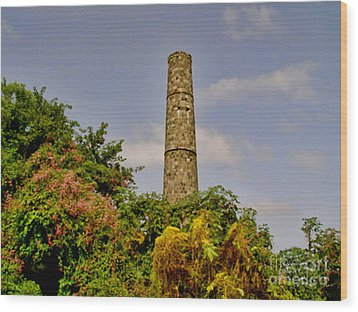 Abandoned Sugar Factory Nevis Wood Print by Louise Fahy