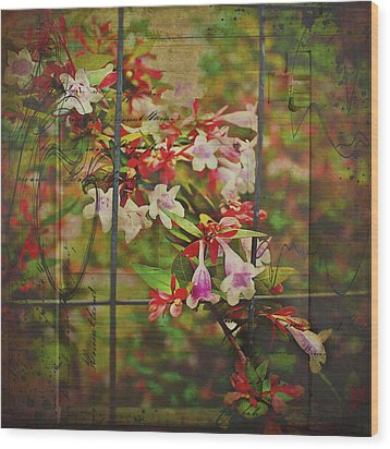 Abelia Coming Through Wood Print