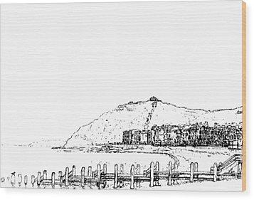 Aberystwyth Wood Print by Frank Hamilton