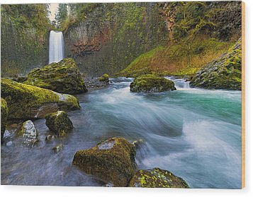 Abiqua Falls In Spring Wood Print by David Gn