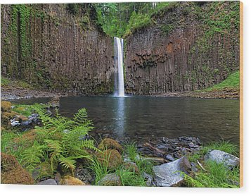 Abiqua Falls In Summer Wood Print by David Gn