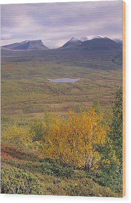 Abisko Nationalpark Wood Print