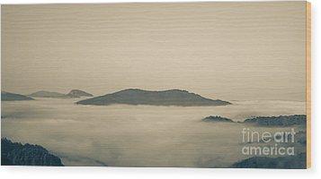 Above Everything Wood Print by Gabriela Insuratelu