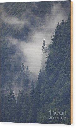 Above Juneau Wood Print