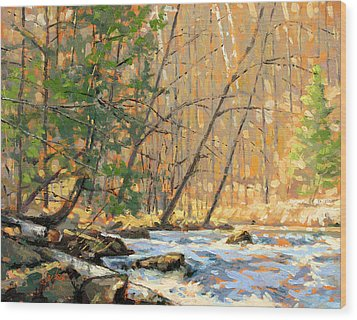 Above The Falls Wood Print by Larry Seiler
