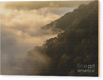 Wood Print featuring the photograph Above The Mist - D009960 by Daniel Dempster