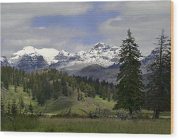 Absaroka Mts Wyoming Wood Print