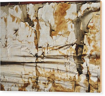 Wood Print featuring the photograph Abstract 1317 Old Wallpaper As Landscape by Kae Cheatham