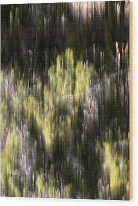 Wood Print featuring the photograph Abstract 3317 In The Forest by Kae Cheatham