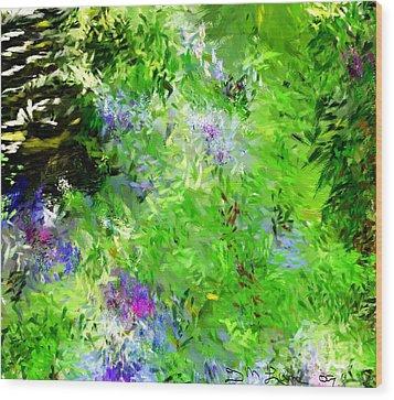 Abstract 5-26-09 Wood Print by David Lane