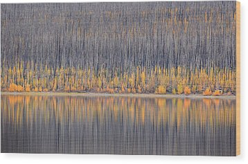 Wood Print featuring the photograph Abstract Autumn by Al Swasey