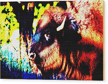 Abstract Buffalo Wood Print