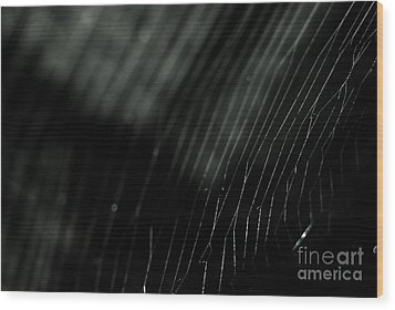 Wood Print featuring the photograph Abstract Cobweb by Yurix Sardinelly