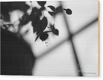 Abstract Flowers Wood Print by Todd A Blanchard