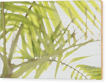 Abstract Foliage Wood Print by Gaspar Avila