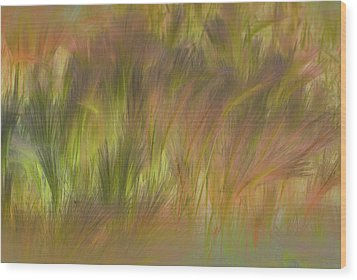 Abstract Grasses Wood Print by Ronald Hoggard