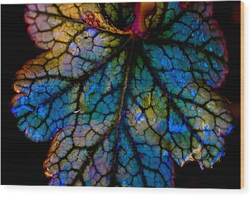 Abstract Leaf Wood Print by Mitch Shindelbower