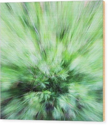 Wood Print featuring the photograph Abstract Leaves 7 by Rebecca Cozart