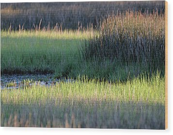 Wood Print featuring the photograph Abstract Marsh Grasses by Bruce Gourley
