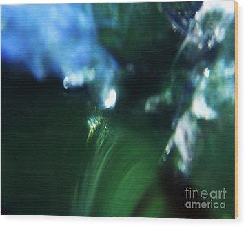 Abstract No.14 Wood Print by Mic DBernardo