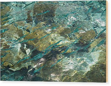 Abstract Of The Underwater World. Production By Nature Wood Print by Jenny Rainbow