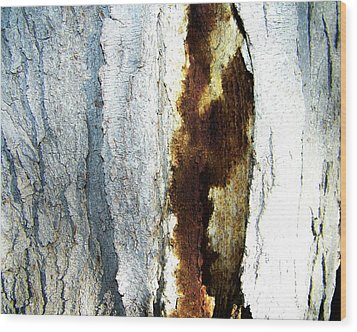 Wood Print featuring the photograph Abstract One by Lenore Senior