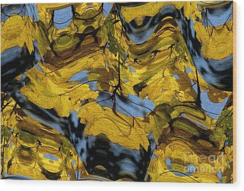 Abstract Pattern 4 Wood Print by Jean Bernard Roussilhe