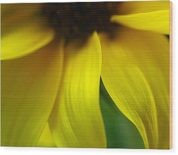 Abstract Sunflower Wood Print by Juergen Roth