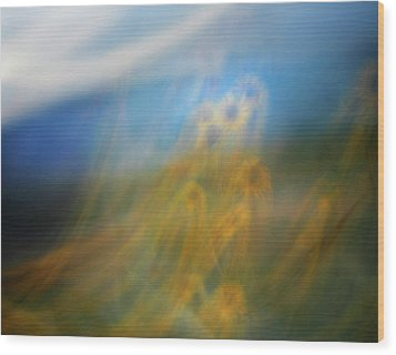Wood Print featuring the photograph Abstract Sunflowers by Marilyn Hunt