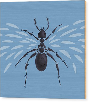 Abstract Winged Ant Wood Print by Boriana Giormova