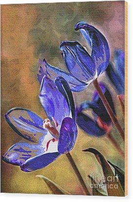 Abstracticus Tuliptimus Wood Print