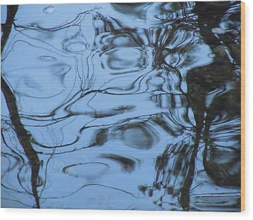 Abstracts In Nature Part 3 Wood Print by Dan Whittemore