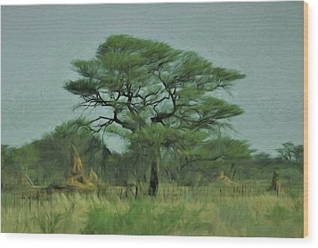 Wood Print featuring the digital art Acacia Tree And Termite Hills by Ernie Echols